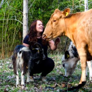 eläinavusteisuus